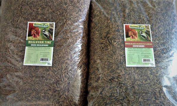 New! Worm Combo -30 Lbs (15 lb Mealworms & 15 lb (Sunworms)Black Soldier fly larvae