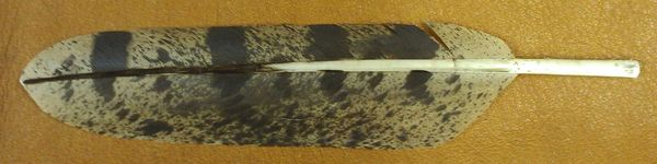 Imitation Great Horned Owl Feather
