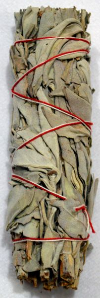 Small Dried White Sage Smudge Stick