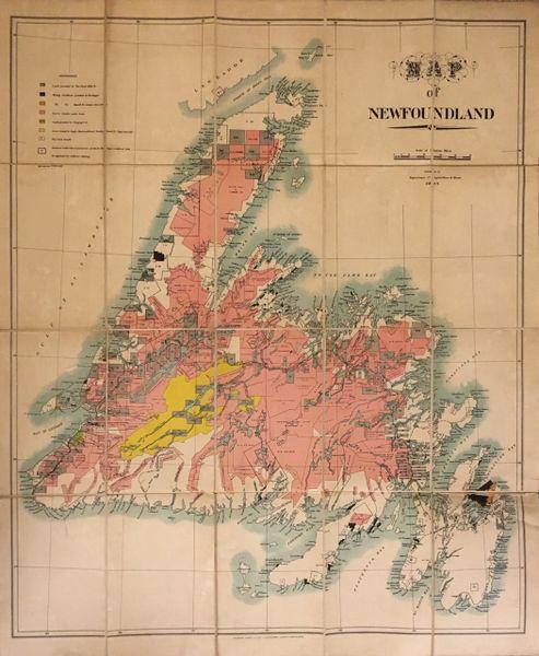 Map of Newfoundland.