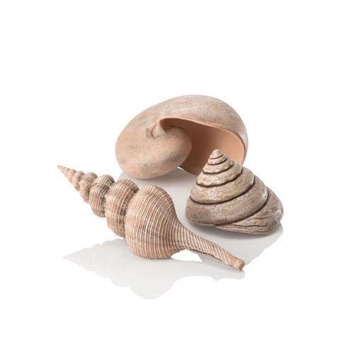 biOrb Sea Shell Set 3 natural - 48355