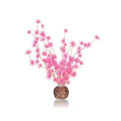 biOrb Bonsai Ball pink - 55067