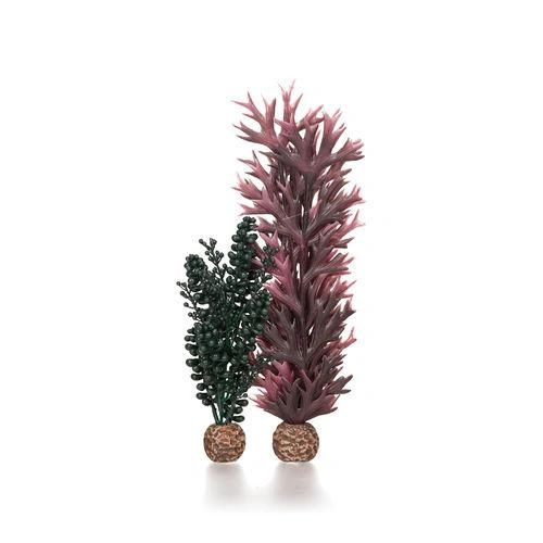 biOrb Seapearls & Kelp medium dark green - 55074