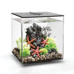 biOrb CUBE 30 Aquarium - BLACK 8 gallon 54484