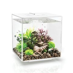 biOrb CUBE 30 Aquarium - White 8 gallon 54490
