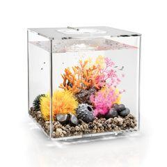 biOrb CUBE 30 Aquarium - Transparent 8 gallon 54495