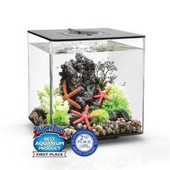 biOrb CUBE 30 Aquarium with MCR - Black 8 gallon 54500