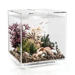 biOrb CUBE 60 Aquarium - 16 gallon LED Transparent 54526