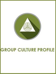 Group Culture Profile with online report (single)