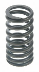 Valve Spring (Sealed Power VS485) 59-76
