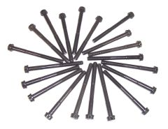 Head Bolt Set - Both Heads (DNJ HBK972) 98-09