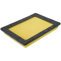 Air Filter (Fram CA9687) 04-08
