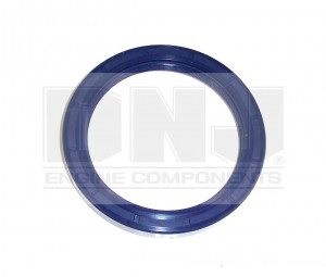 Rear Main Seal (DNJ RM205)