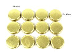 Frost Plug Set - Brass (DNJ FPS616) 84-98