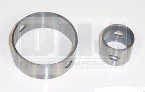 Balance Shaft Bearing (DNJ BS145) 81-95
