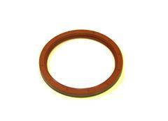 Rear Main Seal (DNJ RM1100) 99-13