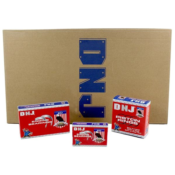 Engine Re-Main Kit (DNJ RRK173) 04-10