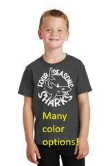 Four Seasons Youth T-Shirt MANY COLOR OPTIONS (PC54Y)