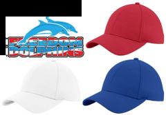 Freedom Dolphins- Mesh Cap
