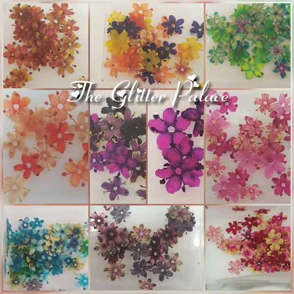 Real dried flowers (20 mixed color flowers)