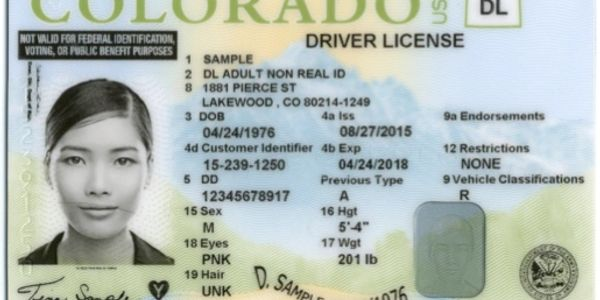 Undocumented Immigrants Driver's License, Colorado Driver's license, Mazen Kherdeen Arab American journal, Mazen Kherdeen, Arab American Journal, Kherdeen