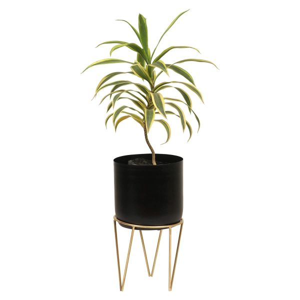 Coudre Home Decorative Metal Planters with Stand (BlackCylinder-1)