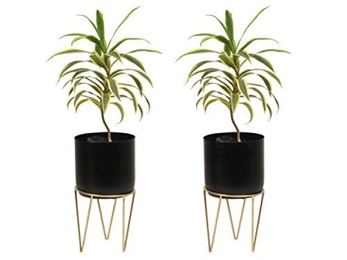 Coudre Home Decorative Metal Planters with Stand (Black-Pack of 2)
