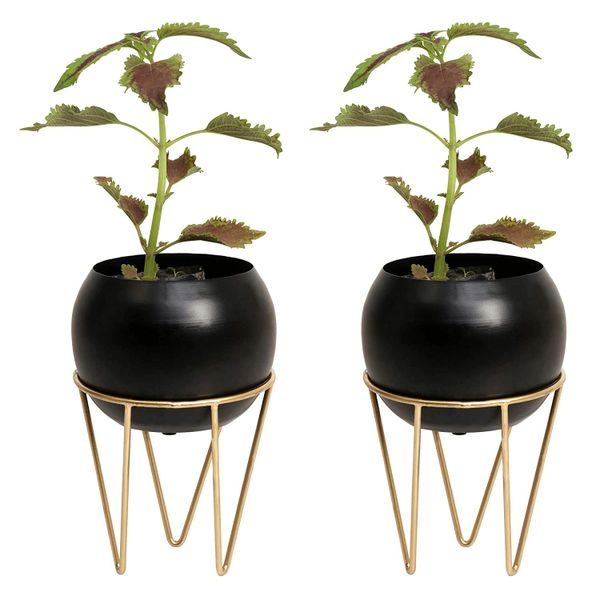 Coudre Home Decorative Metal Planters with Stand (BlackBowl-Pack of 2)