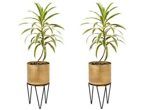 Coudre Home Decorative Metal Planters with Stand (Gold-Pack of 2)