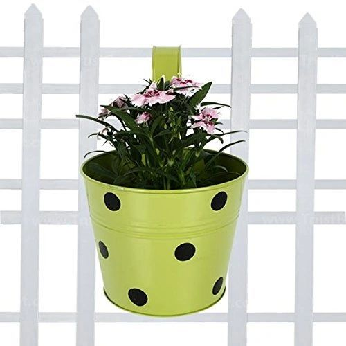 Coudre Dotted Round Railing Planters for Balcony, Terrace Garden, Flower pots for Home Decoration (Green)