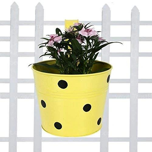 Coudre Dotted Round Railing Planters for Balcony, Terrace Garden, Flower pots for Home Decoration (Yellow)