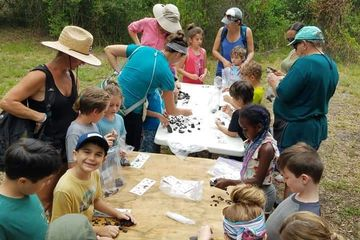 Ages 6 to 10 years old. Includes 2 hour fossil hunting with all equipment provided and children educ