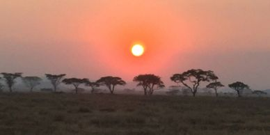 Namibia and Botswana Self-Drive Safari - African Star Tours