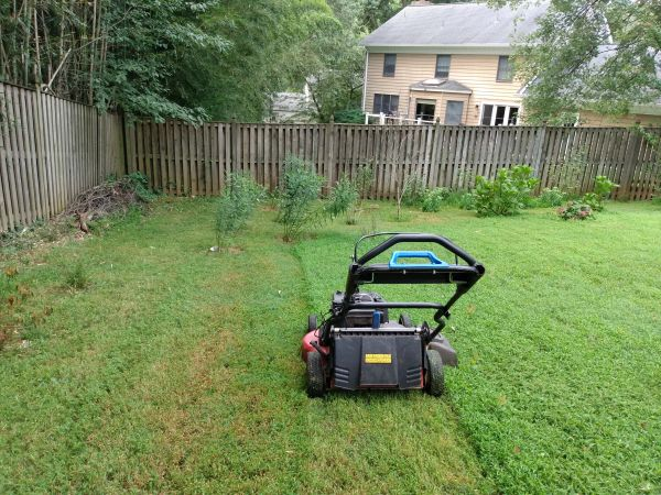 Basic package lawn Care