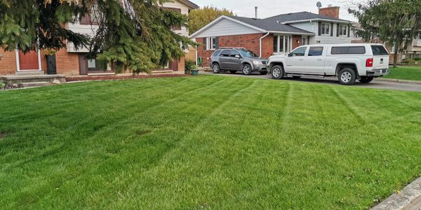Lawn Care, Landscaping, Wallaceburg, Sarnia, Chatham, Fertilizer, Weed Control, Grass Cutting