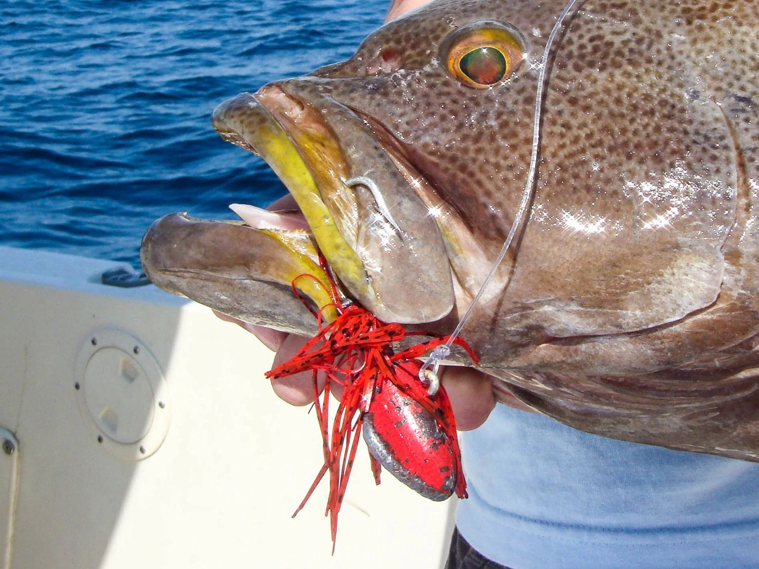 Coastal anglers order Crab Decoy Jigs for striped bass, drum, snook, grouper, west coast bottom fish