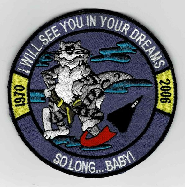 "F-14 Tomcat ""I Will See You In Your Dreams - So Long...Baby!"" patch."