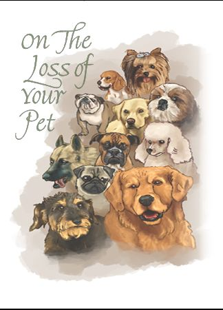 NP635 ON THE LOSS OF YOUR PET