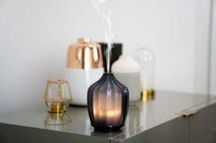 Fern Grey Aroma Diffuser