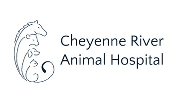 Cheyenne River Animal Hospital