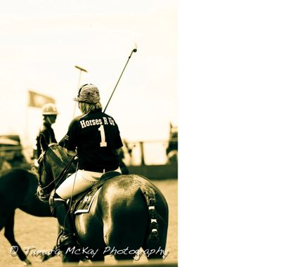 Horses R Us