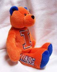 "LIMITED TREASURE BEAR - Illinois University Collectible Stuffed 9"" College TeddyBear"