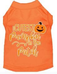 Funny Dog Shirts: Halloween Screen Print Dog Shirt CUTEST PUMPKIN IN THE PATCH in Various Colors & Sizes