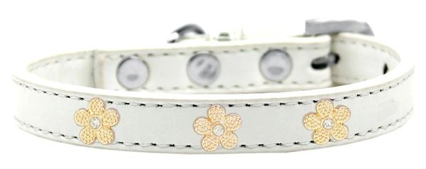 Widget Dog Collars: Cute GOLD FLOWER WIDGET Dog Collar in Various Sizes and Colors