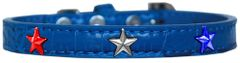 Dog Collars: Cute Dog Collar with Red, White, & Blue STAR Widgets on Faux Croc Dog Collar