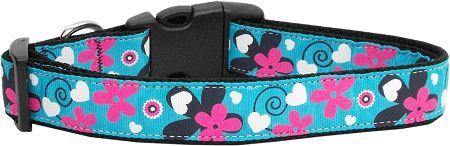 Nylon Ribbon Dog Collar/Cat Collar - AQUA LOVE in Various Sizes with Durable Hardware - Matching Leash Sold Separately