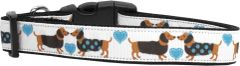 Nylon Ribbon Dog Collar - DOXIE LOVE with Durable Hardware in Several Sizes - Matching Leash sold separately
