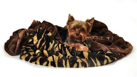 DOG BLANKETS: Pet Blankets Luxurious Fabric Washable Reversible Sizes From Carrier to Jumble - CAMO