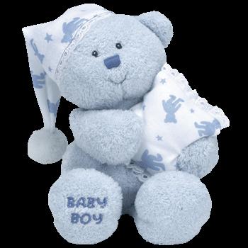 ITS A BOY the Bear TY Beanie Buddy