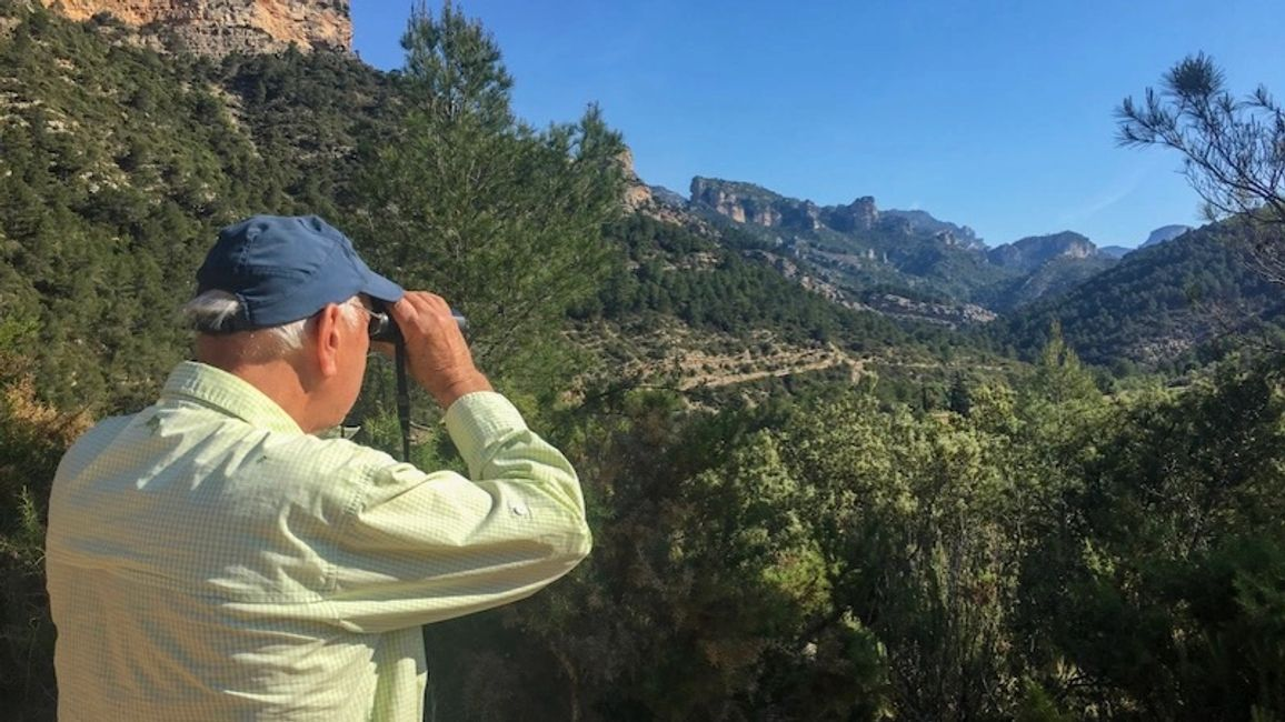 Bird watching in Spain on the Els Ports vulture & mountain tour, run by Ebro Delta Birding
